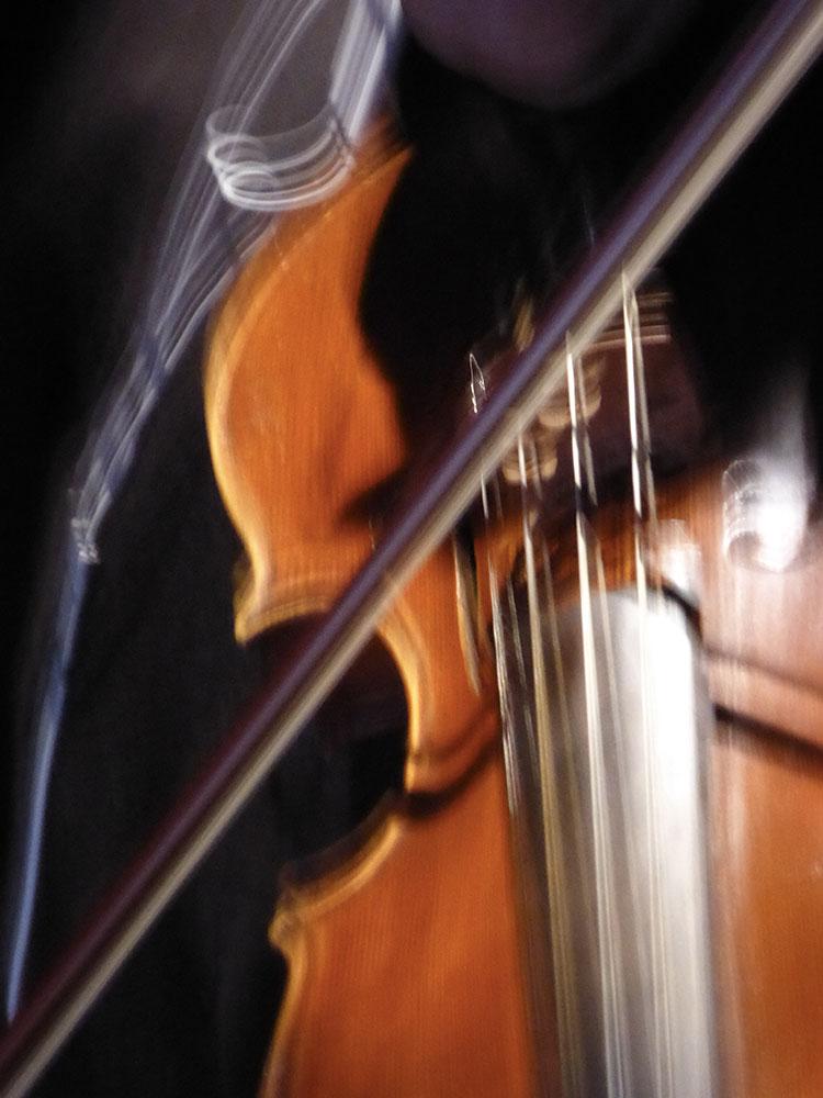 Rachid Brahim-Djelloul  – violinist